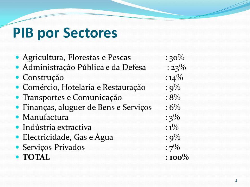 PIB por Sectores Agricultura, Florestas e Pescas : 30%