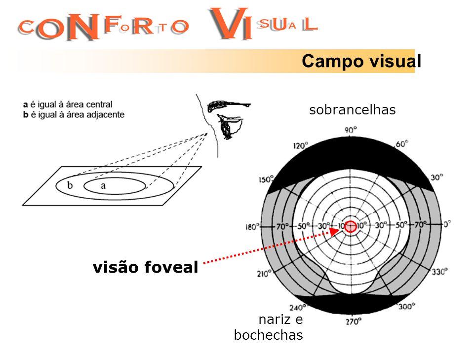 Campo visual sobrancelhas visão foveal nariz e bochechas
