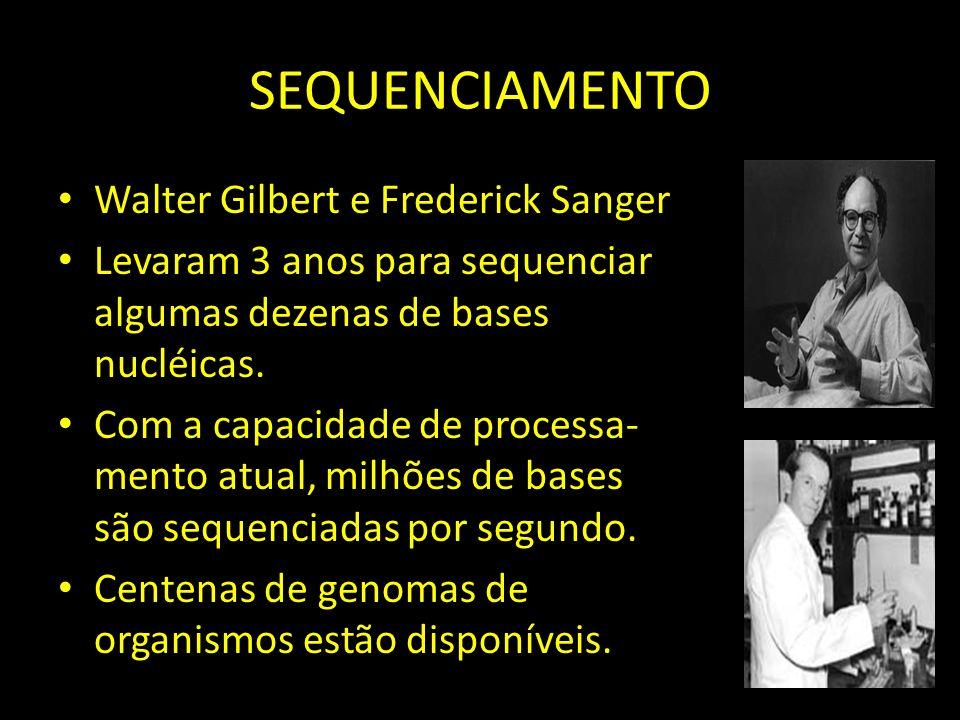 SEQUENCIAMENTO Walter Gilbert e Frederick Sanger