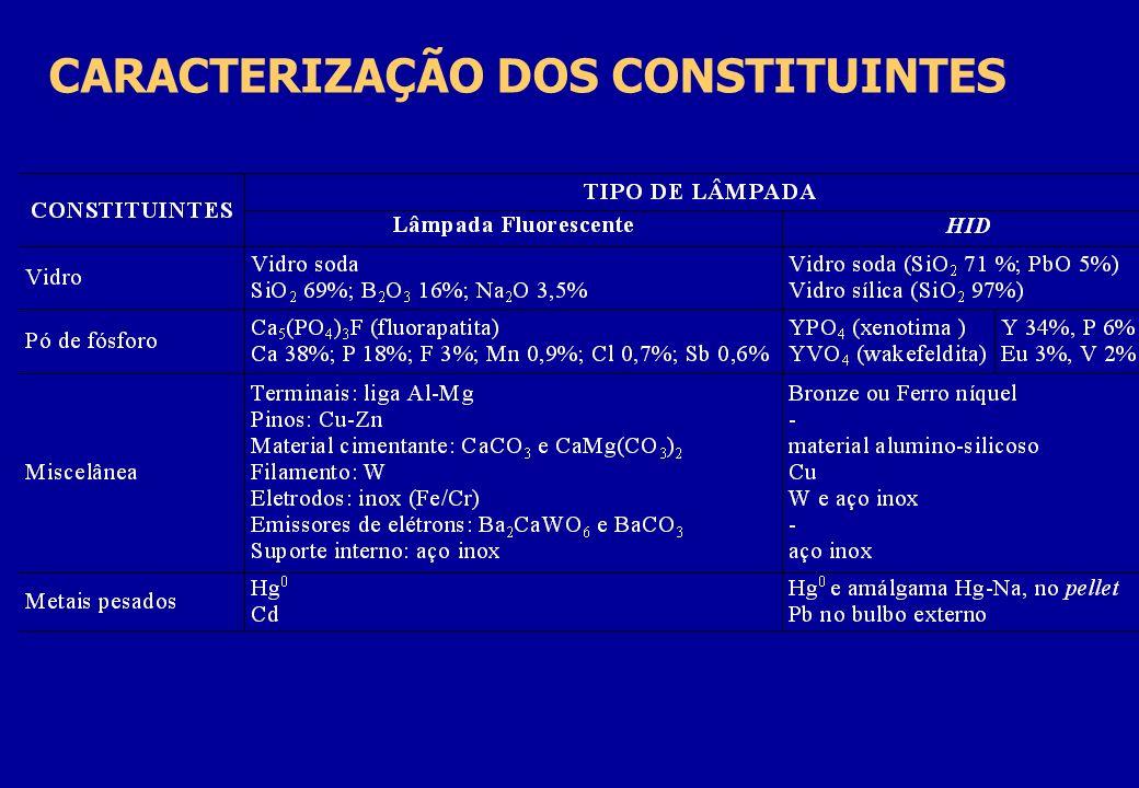 CARACTERIZAÇÃO DOS CONSTITUINTES