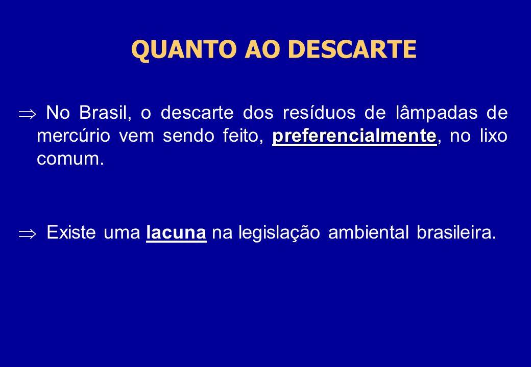 QUANTO AO DESCARTE No Brasil, o descarte dos resíduos de lâmpadas de mercúrio vem sendo feito, preferencialmente, no lixo comum.