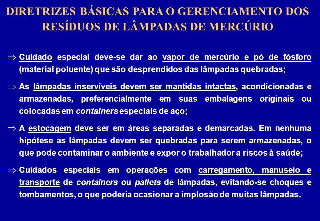 DIRETRIZES BÁSICAS PARA O GERENCIAMENTO DOS RESÍDUOS DE LÂMPADAS DE MERCÚRIO