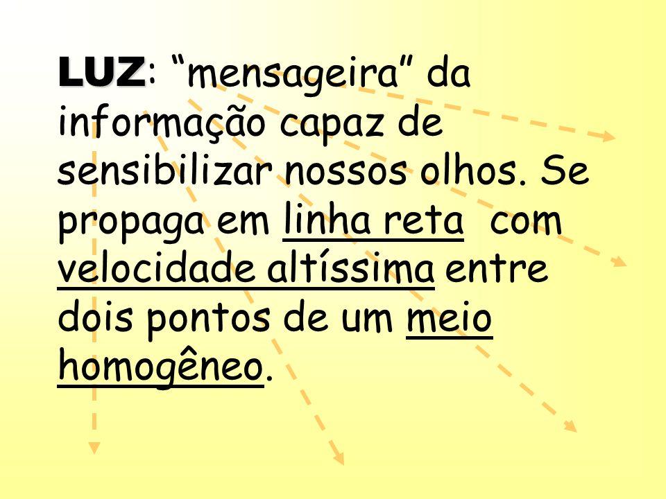 LUZ: mensageira da informação capaz de sensibilizar nossos olhos