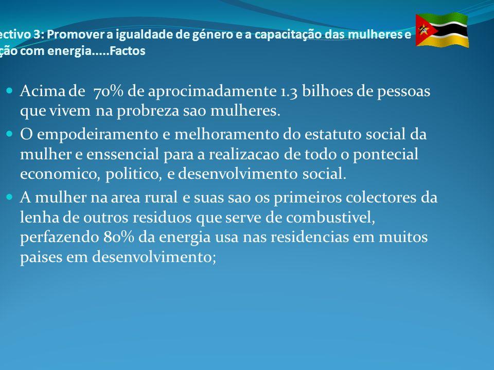 Objectivo 3: Promover a igualdade de género e a capacitação das mulheres e relação com energia.....Factos
