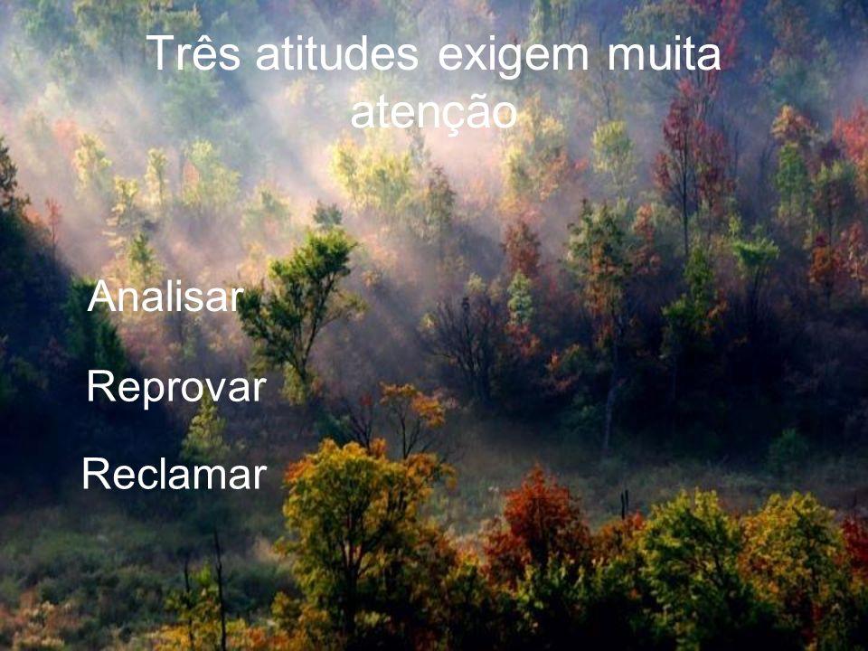 Três atitudes exigem muita atenção