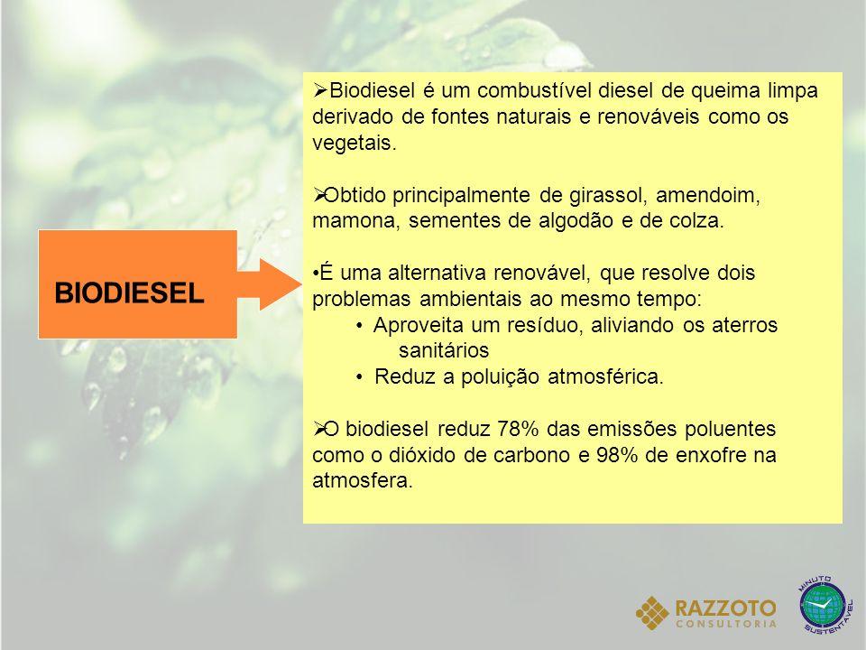 Biodiesel é um combustível diesel de queima limpa derivado de fontes naturais e renováveis como os vegetais.