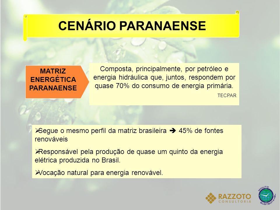 MATRIZ ENERGÉTICA PARANAENSE