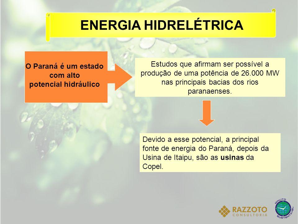 O Paraná é um estado com alto potencial hidráulico