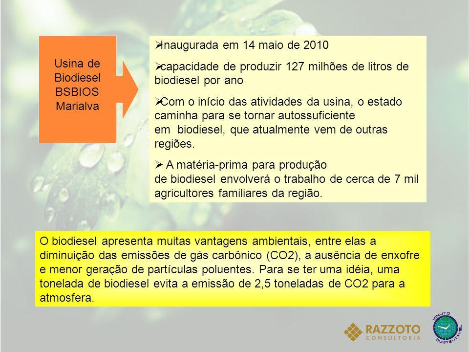 Usina de Biodiesel BSBIOS Marialva