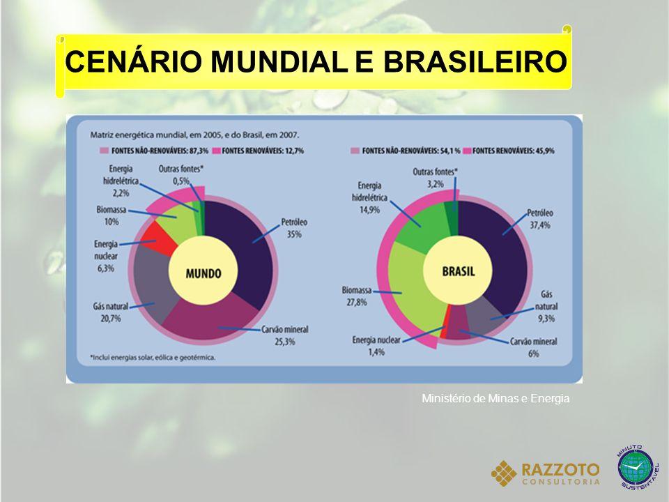 CENÁRIO MUNDIAL E BRASILEIRO