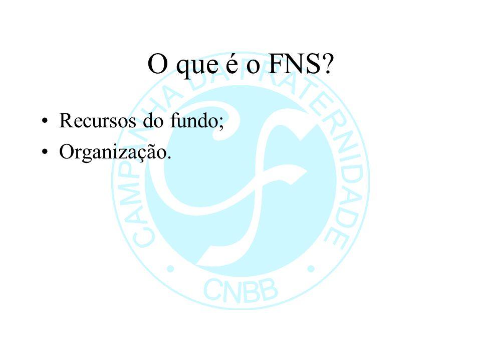 O que é o FNS Recursos do fundo; Organização.