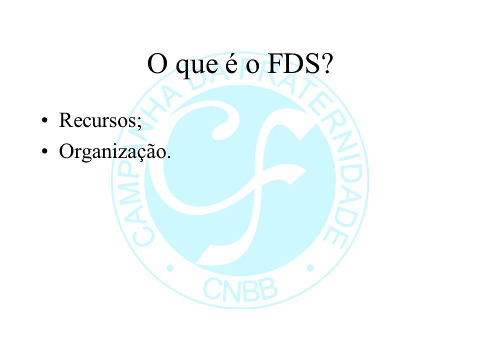 O que é o FDS Recursos; Organização.