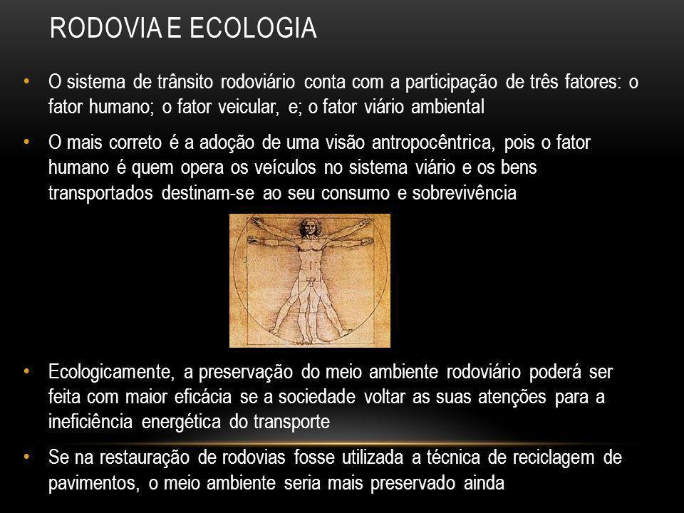RODOVIA E ECOLOGIA