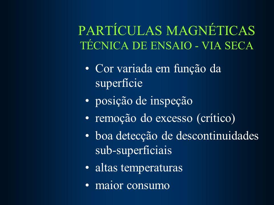 PARTÍCULAS MAGNÉTICAS TÉCNICA DE ENSAIO - VIA SECA
