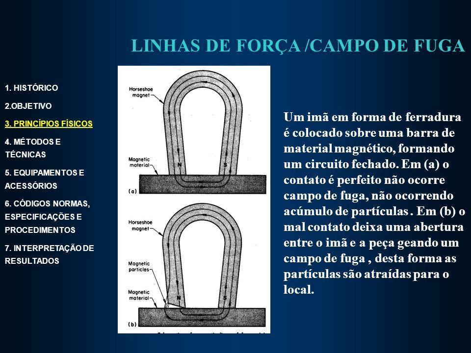 LINHAS DE FORÇA /CAMPO DE FUGA