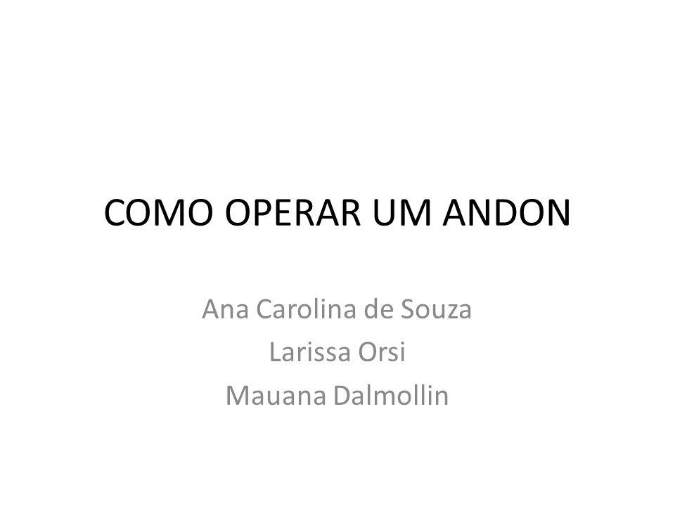 Ana Carolina de Souza Larissa Orsi Mauana Dalmollin
