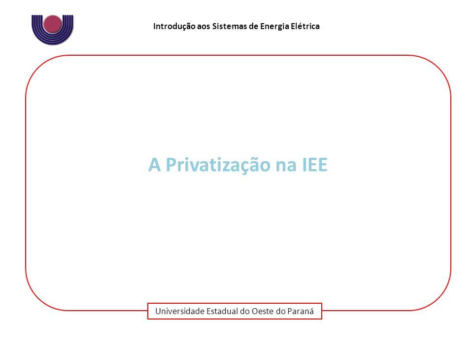 A Privatização na IEE