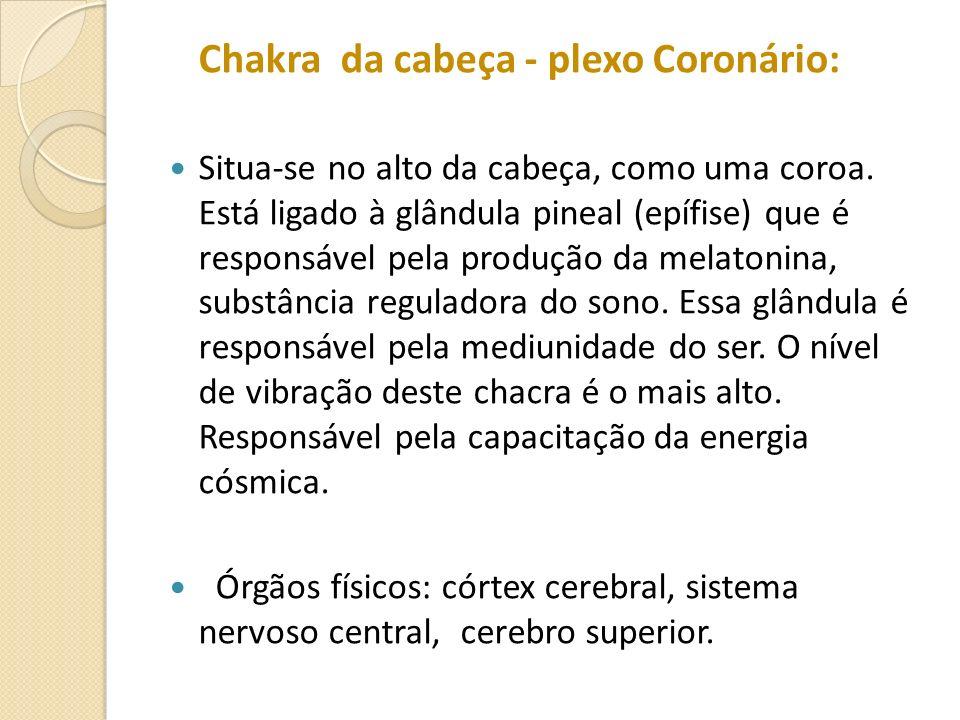 Chakra da cabeça - plexo Coronário: