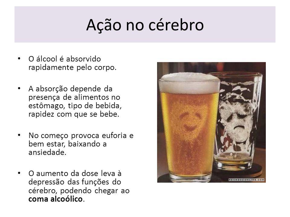 Ação no cérebro O álcool é absorvido rapidamente pelo corpo.