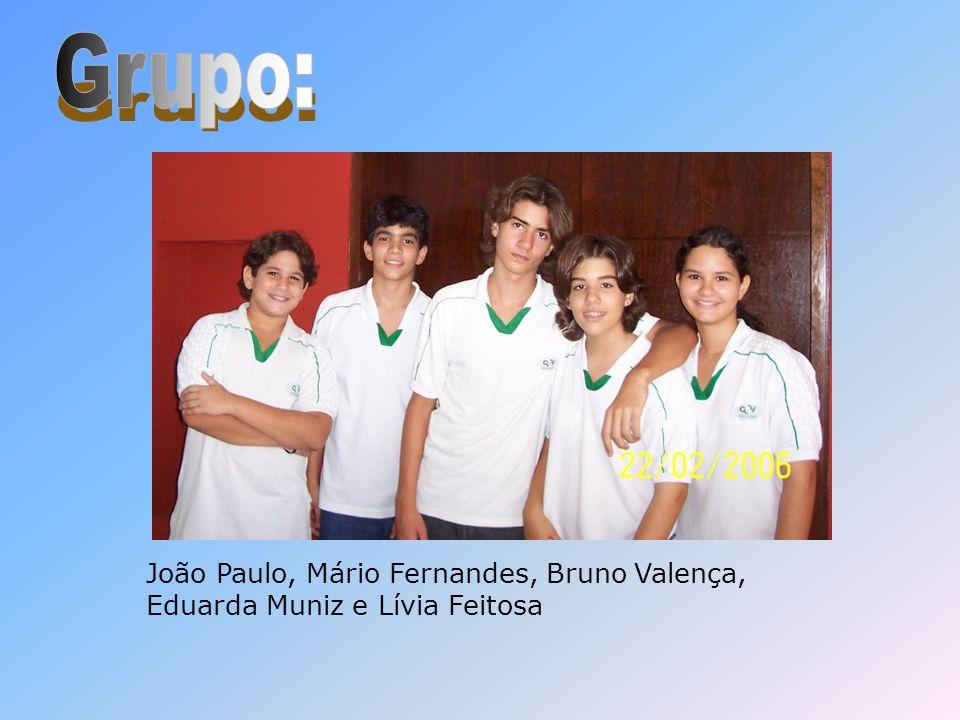 Grupo: João Paulo, Mário Fernandes, Bruno Valença, Eduarda Muniz e Lívia Feitosa