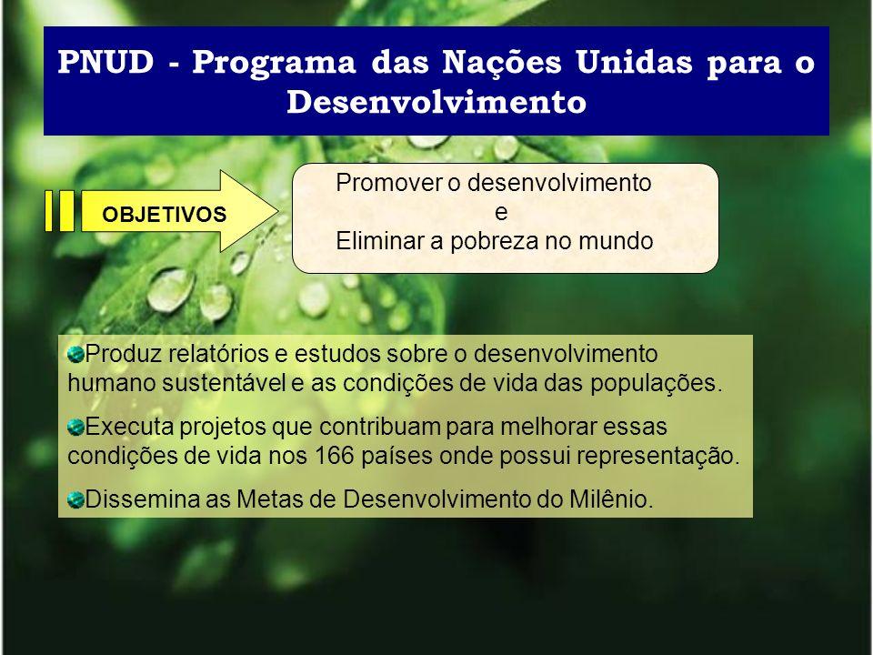 PNUD - Programa das Nações Unidas para o Desenvolvimento