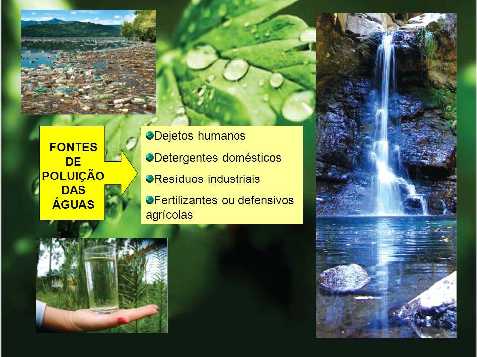 FONTES DE POLUIÇÃO DAS ÁGUAS