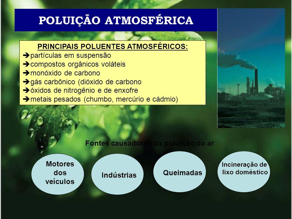 POLUIÇÃO ATMOSFÉRICA PRINCIPAIS POLUENTES ATMOSFÉRICOS: