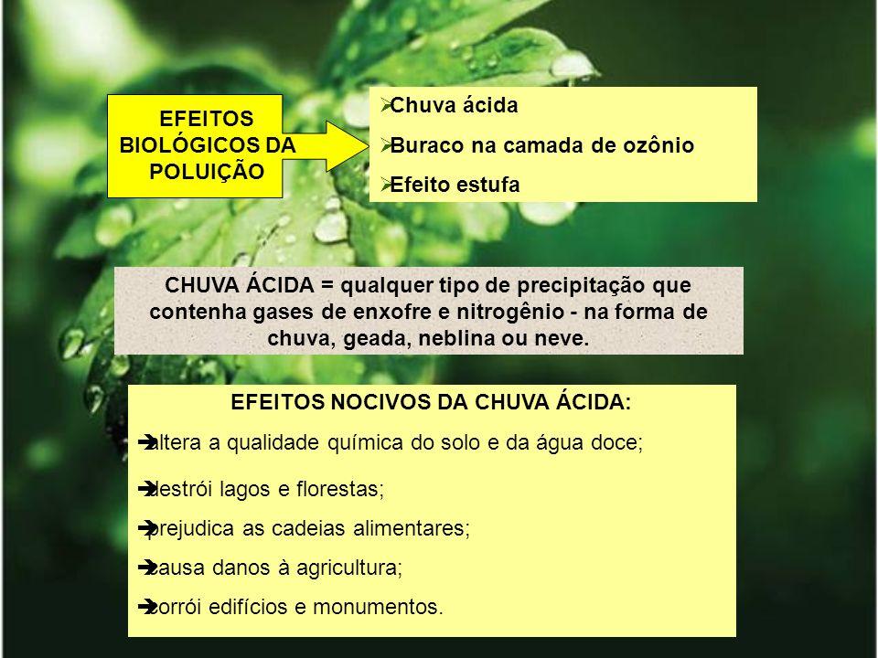 EFEITOS BIOLÓGICOS DA POLUIÇÃO EFEITOS NOCIVOS DA CHUVA ÁCIDA: