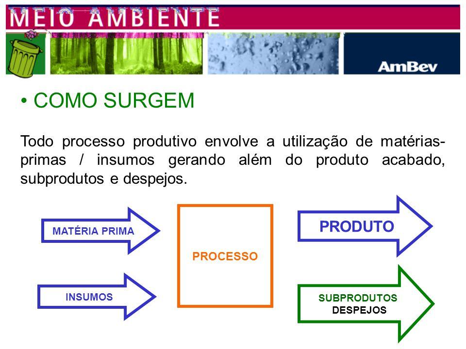 COMO SURGEM Todo processo produtivo envolve a utilização de matérias- primas / insumos gerando além do produto acabado, subprodutos e despejos.