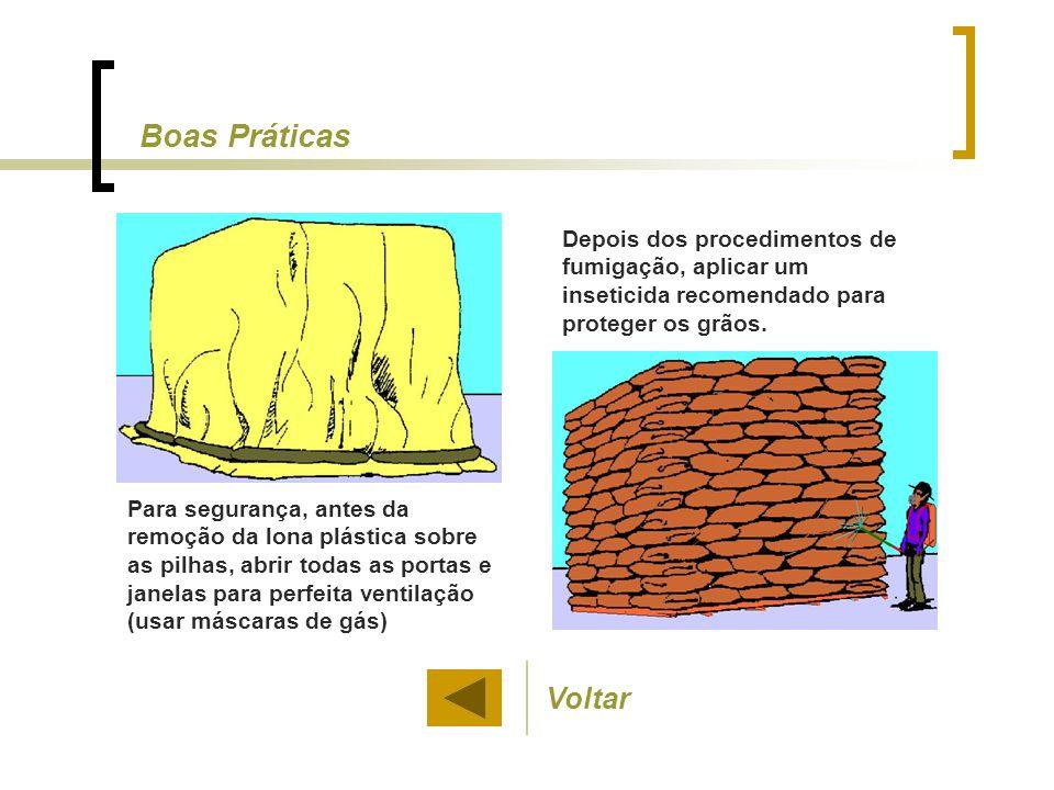 Boas Práticas Depois dos procedimentos de fumigação, aplicar um inseticida recomendado para proteger os grãos.