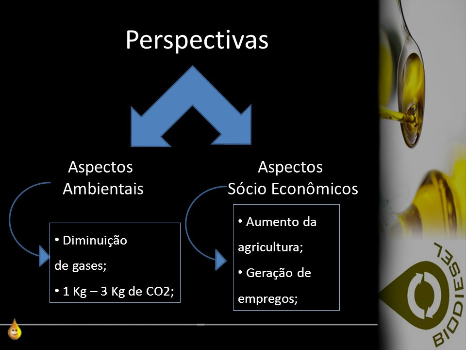 Perspectivas Aspectos Ambientais Aspectos Sócio Econômicos Aumento da