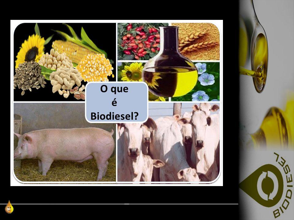 Redhgrh Rh Rhr O que é Biodiesel