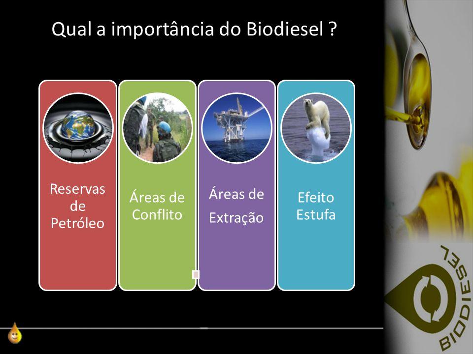 Qual a importância do Biodiesel
