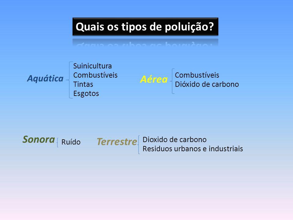Quais os tipos de poluição