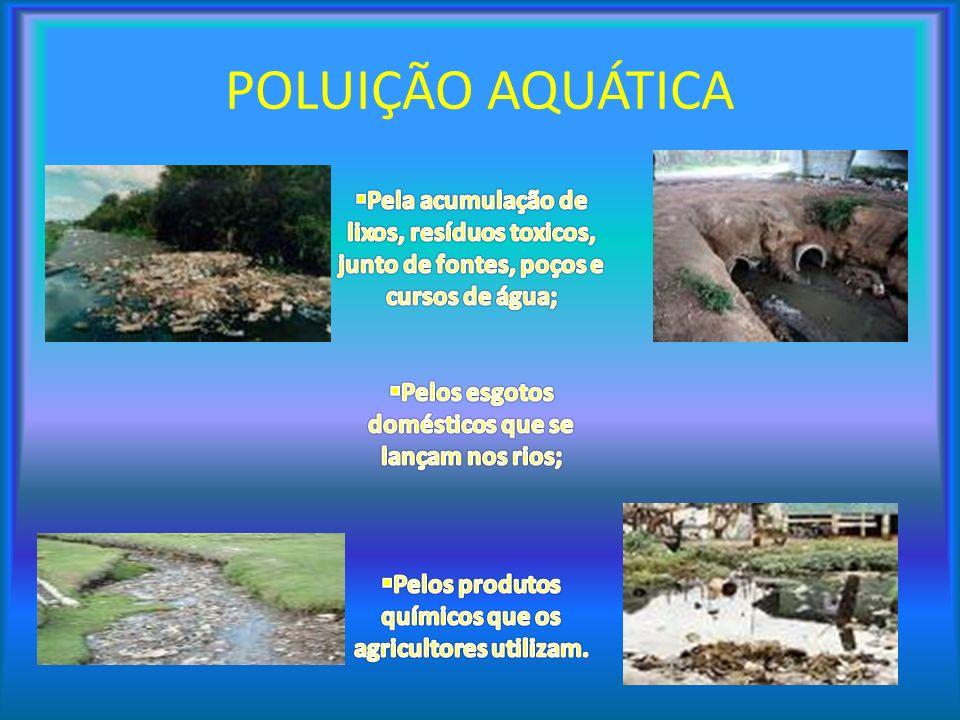 POLUIÇÃO AQUÁTICA Pela acumulação de lixos, resíduos toxicos, junto de fontes, poços e cursos de água;