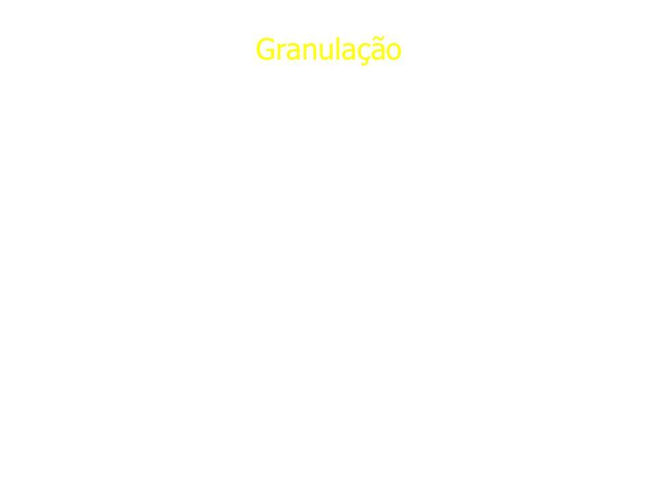 Granulação