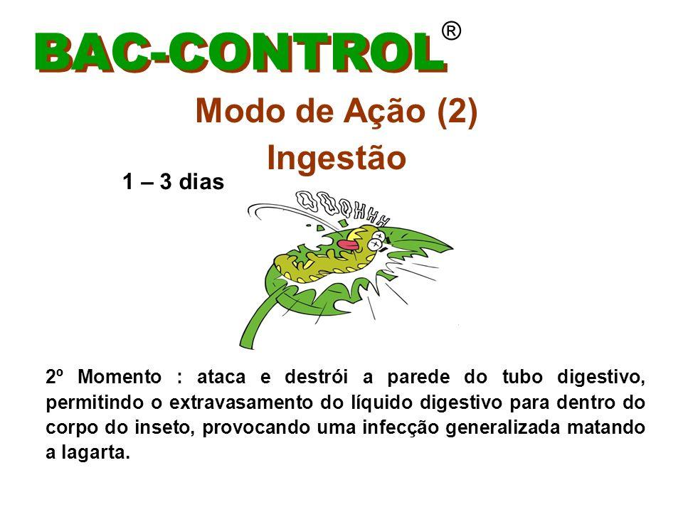 BAC-CONTROL Modo de Ação (2) Ingestão ® 1 – 3 dias