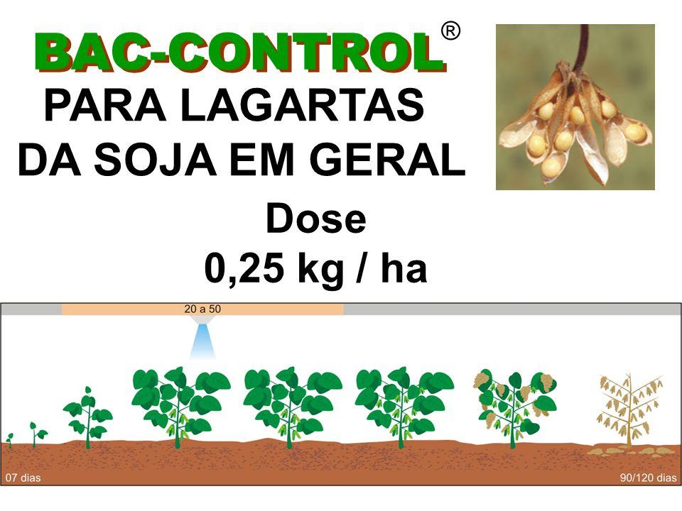 ® BAC-CONTROL PARA LAGARTAS DA SOJA EM GERAL Dose 0,25 kg / ha