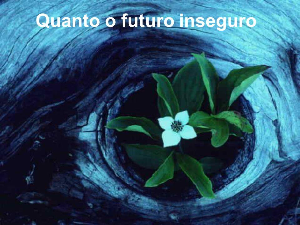 Quanto o futuro inseguro