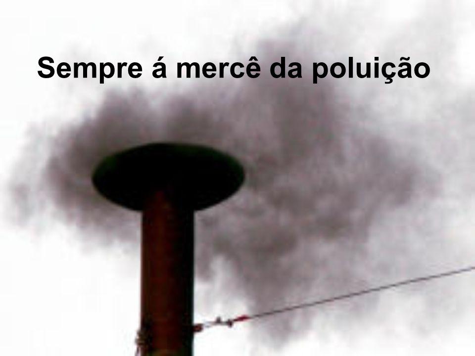 Sempre á mercê da poluição