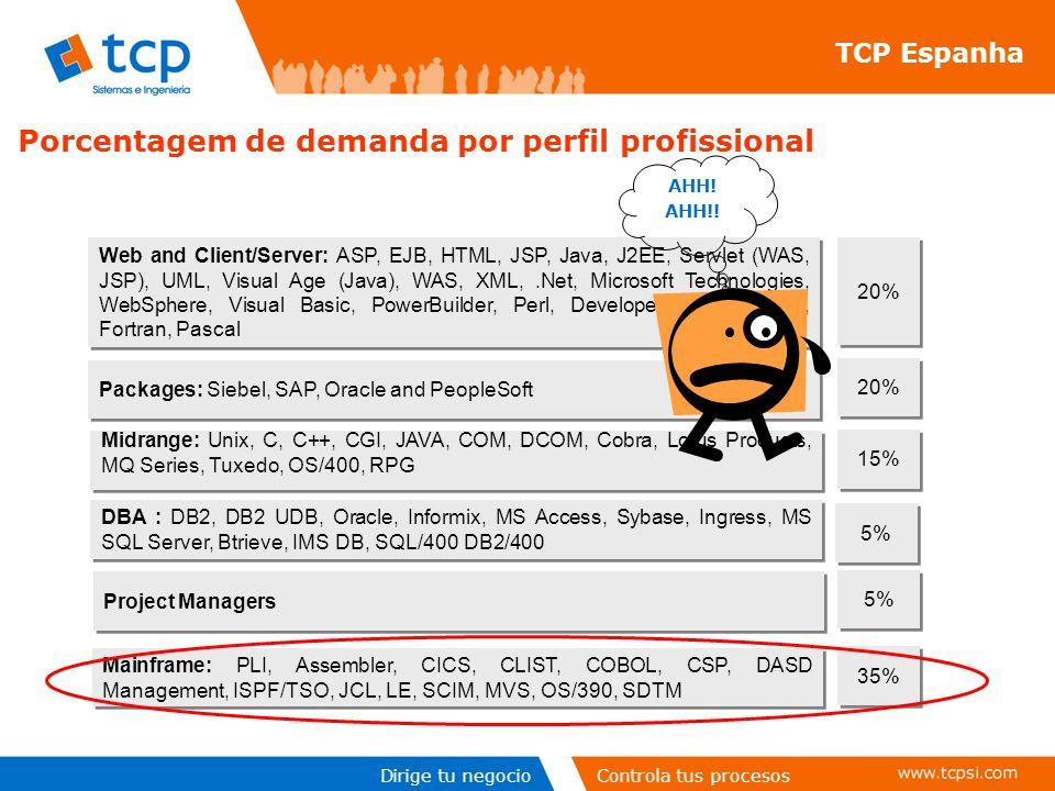 Porcentagem de demanda por perfil profissional