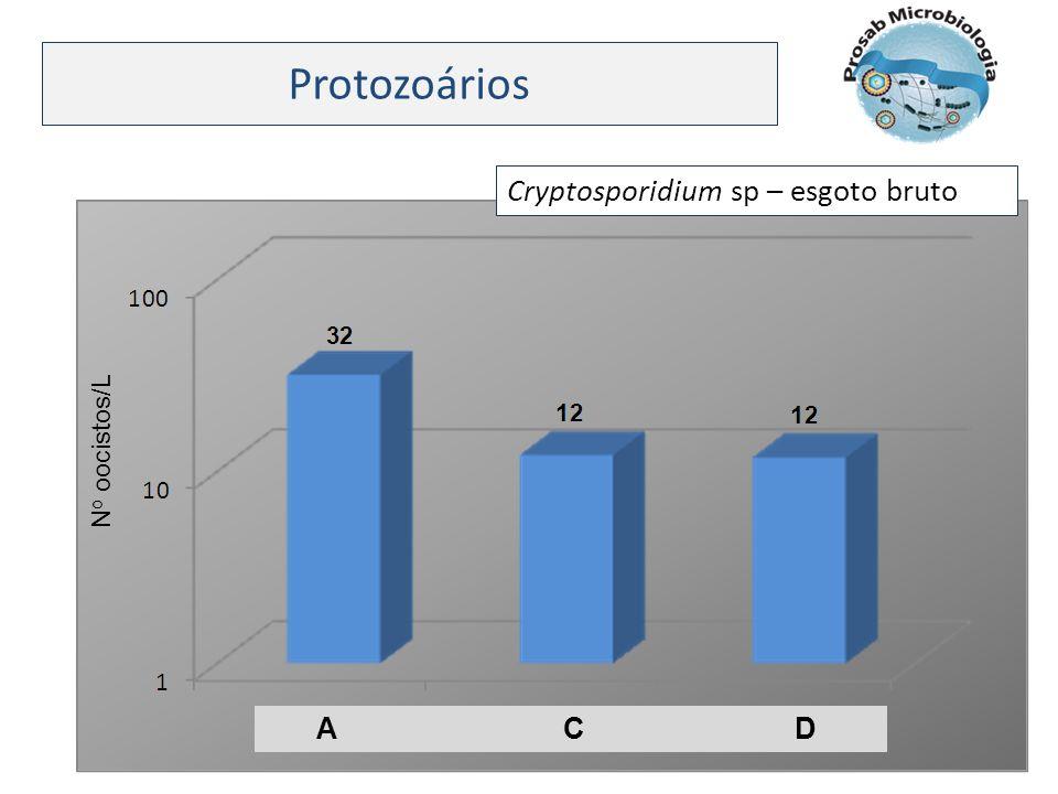 Protozoários Cryptosporidium sp – esgoto bruto. No oocistos/L.
