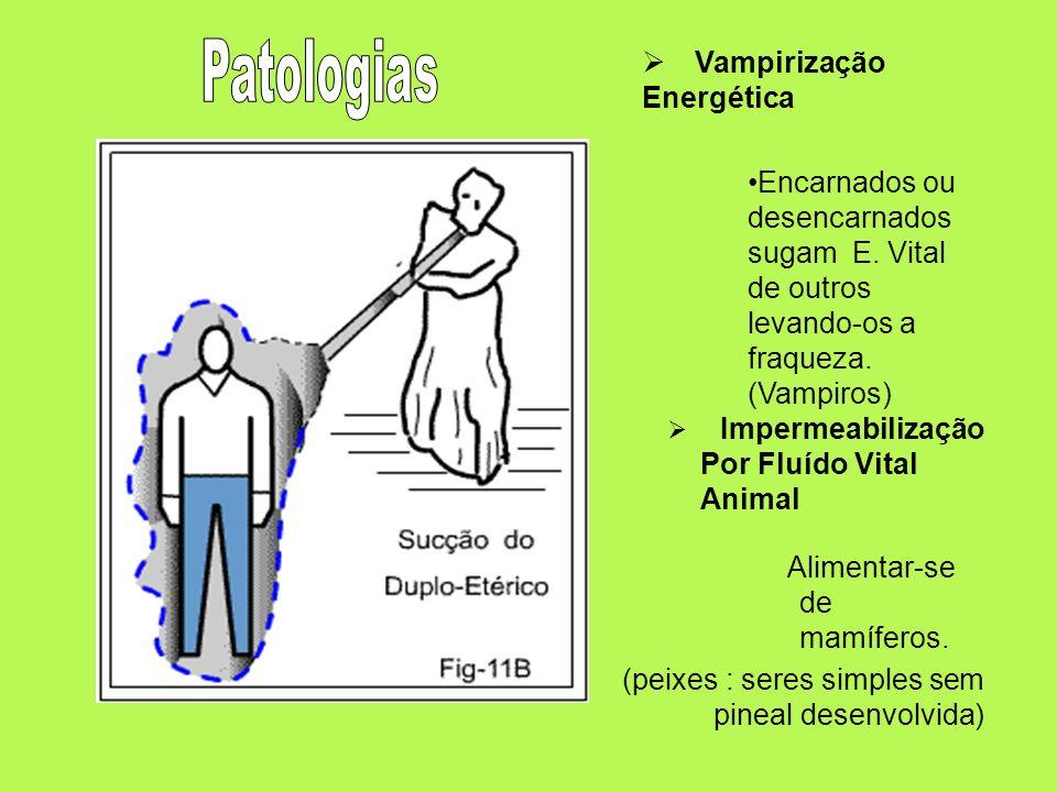 Patologias Vampirização Energética