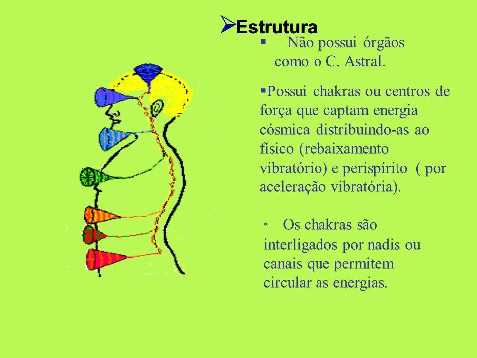 Estrutura Estrutura Não possui órgãos como o C. Astral.