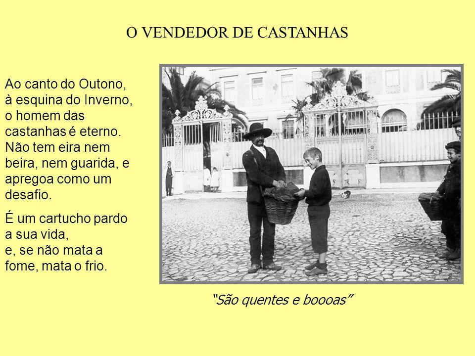 O VENDEDOR DE CASTANHAS