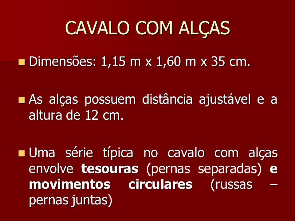 CAVALO COM ALÇAS Dimensões: 1,15 m x 1,60 m x 35 cm.