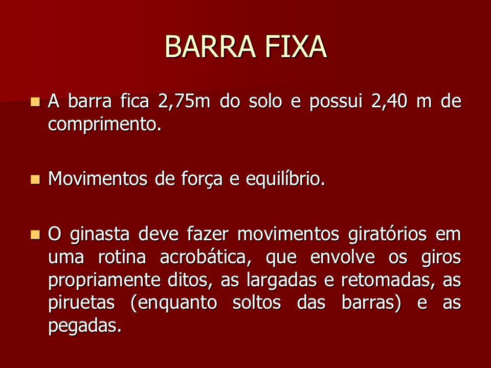 BARRA FIXA A barra fica 2,75m do solo e possui 2,40 m de comprimento.