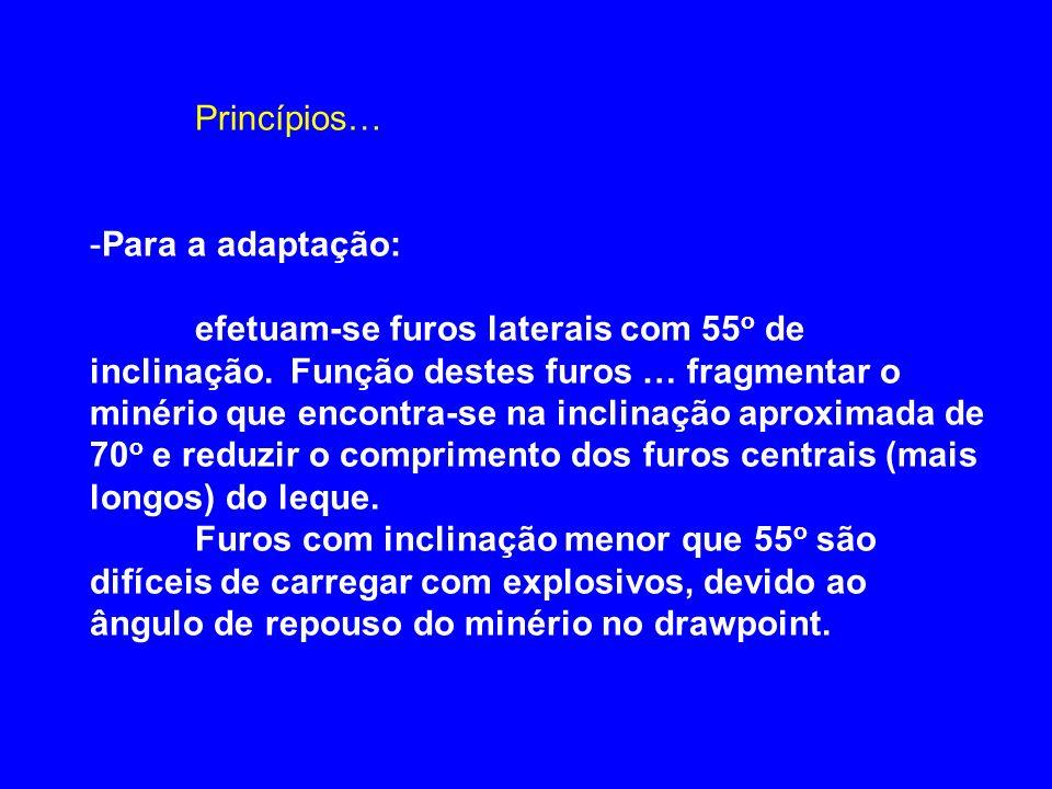Princípios… Para a adaptação: