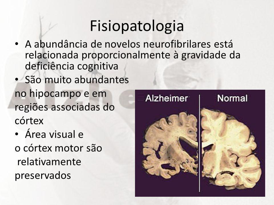 Fisiopatologia A abundância de novelos neurofibrilares está relacionada proporcionalmente à gravidade da deficiência cognitiva.