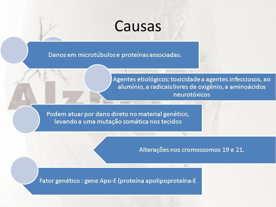 Causas Alterações nos cromossomos 19 e 21.